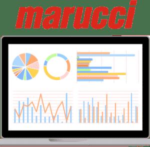 IronEdge Group Power BI for Marucci